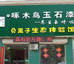 上海啄木鸟漆专卖店